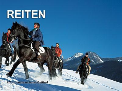 t_reiten